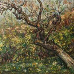 The old pear tree in the garden «My Garden» serie. 2015, oil on canvas, 53.5x70