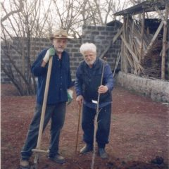 Planting a tree. Ashtarak. 2002